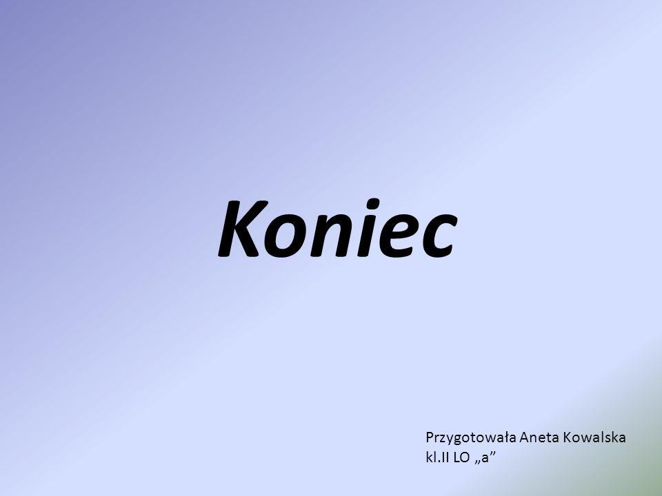 """Koniec Przygotowała Aneta Kowalska kl.II LO """"a"""