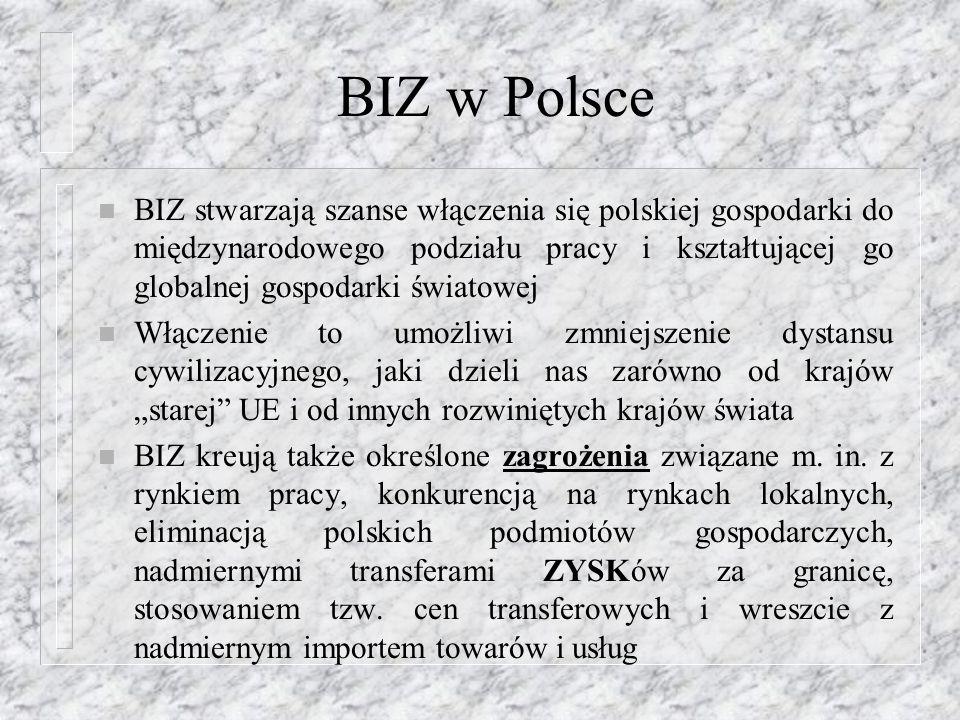 BIZ w Polsce