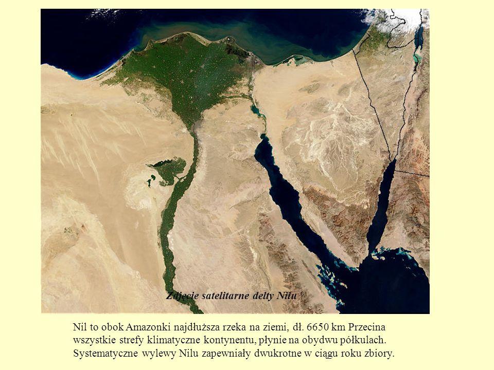 Zdjęcie satelitarne delty Nilu