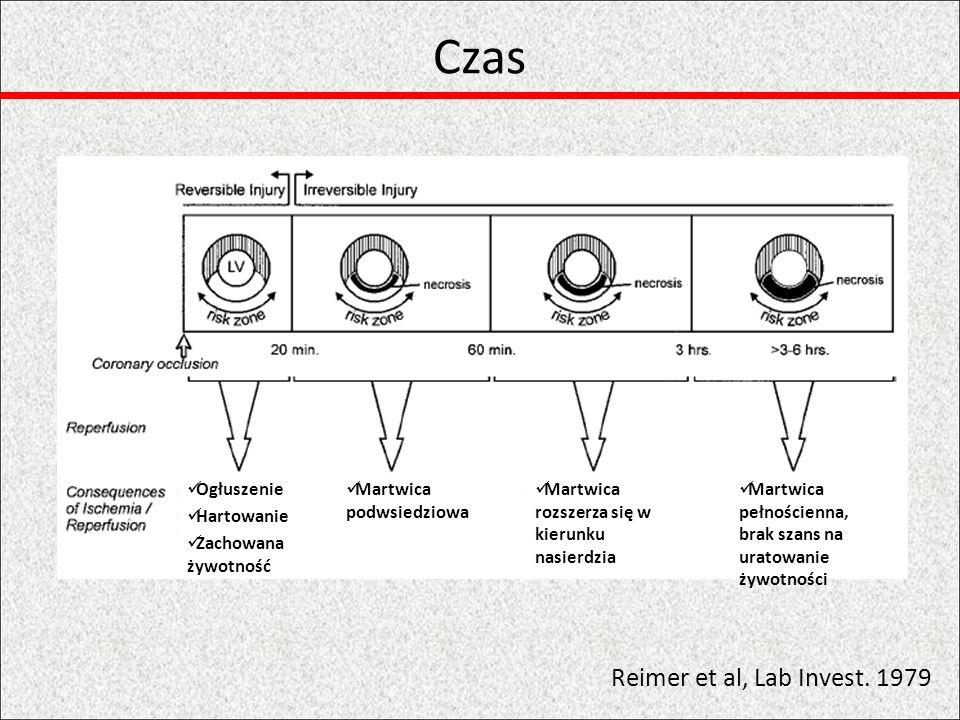 Czas Reimer et al, Lab Invest. 1979 Ogłuszenie Hartowanie