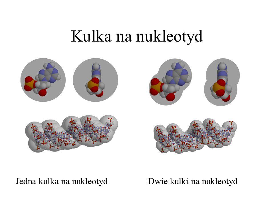 Kulka na nukleotyd Jedna kulka na nukleotyd Dwie kulki na nukleotyd