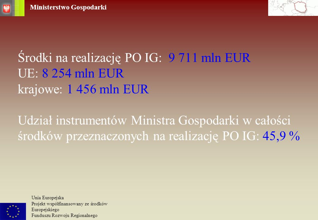 Środki na realizację PO IG: 9 711 mln EUR UE: 8 254 mln EUR krajowe: 1 456 mln EUR Udział instrumentów Ministra Gospodarki w całości środków przeznaczonych na realizację PO IG: 45,9 %