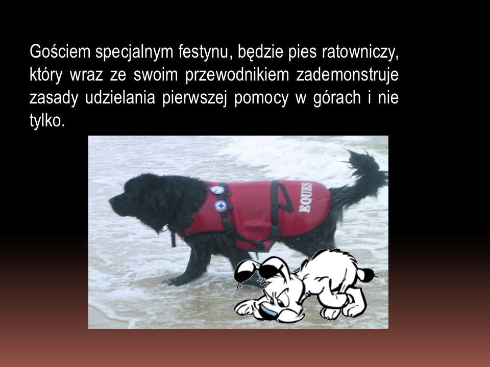 Gościem specjalnym festynu, będzie pies ratowniczy, który wraz ze swoim przewodnikiem zademonstruje zasady udzielania pierwszej pomocy w górach i nie tylko.