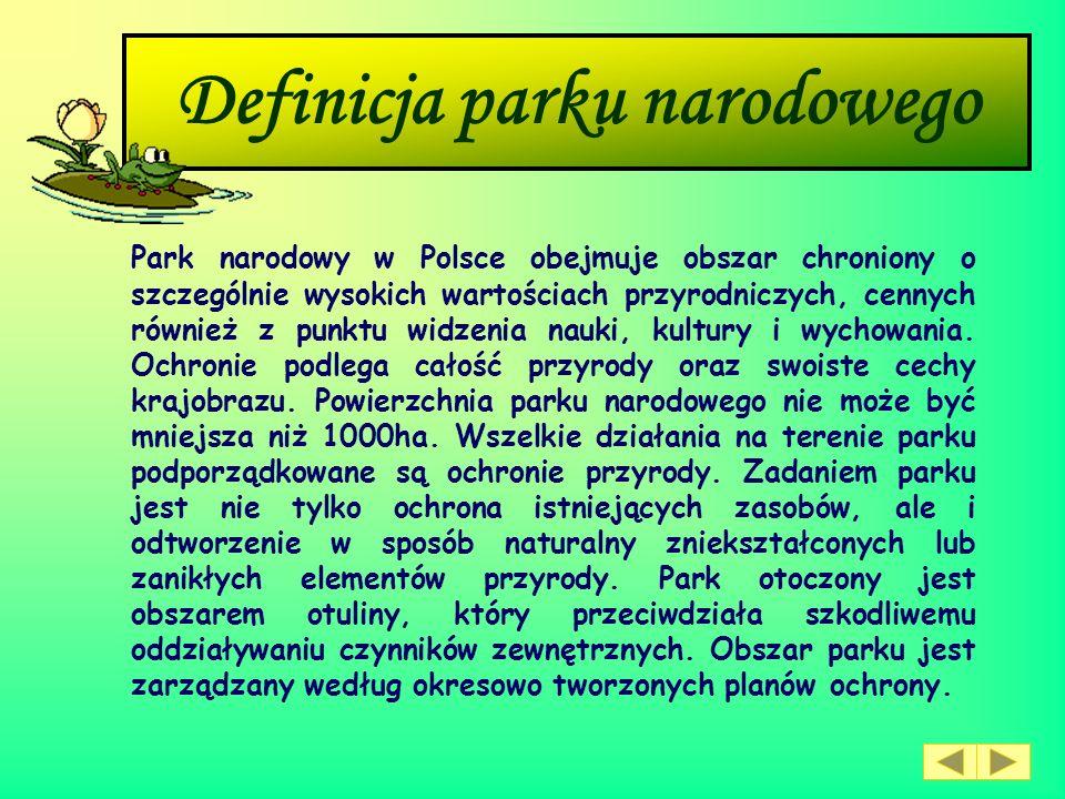 Definicja parku narodowego