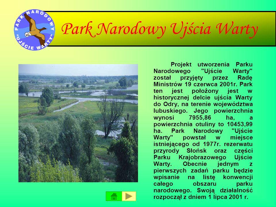 Park Narodowy Ujścia Warty