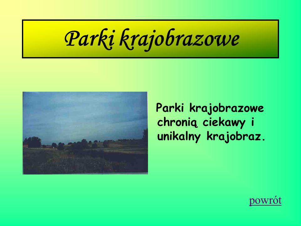 Parki krajobrazowe Parki krajobrazowe chronią ciekawy i unikalny krajobraz. powrót