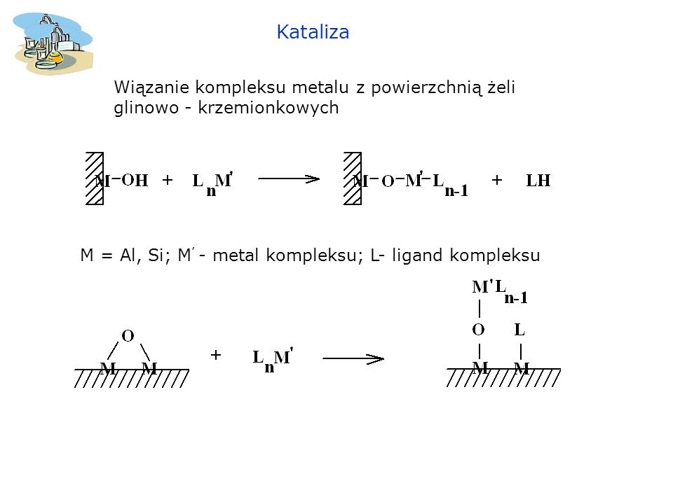 KatalizaWiązanie kompleksu metalu z powierzchnią żeli glinowo - krzemionkowych.