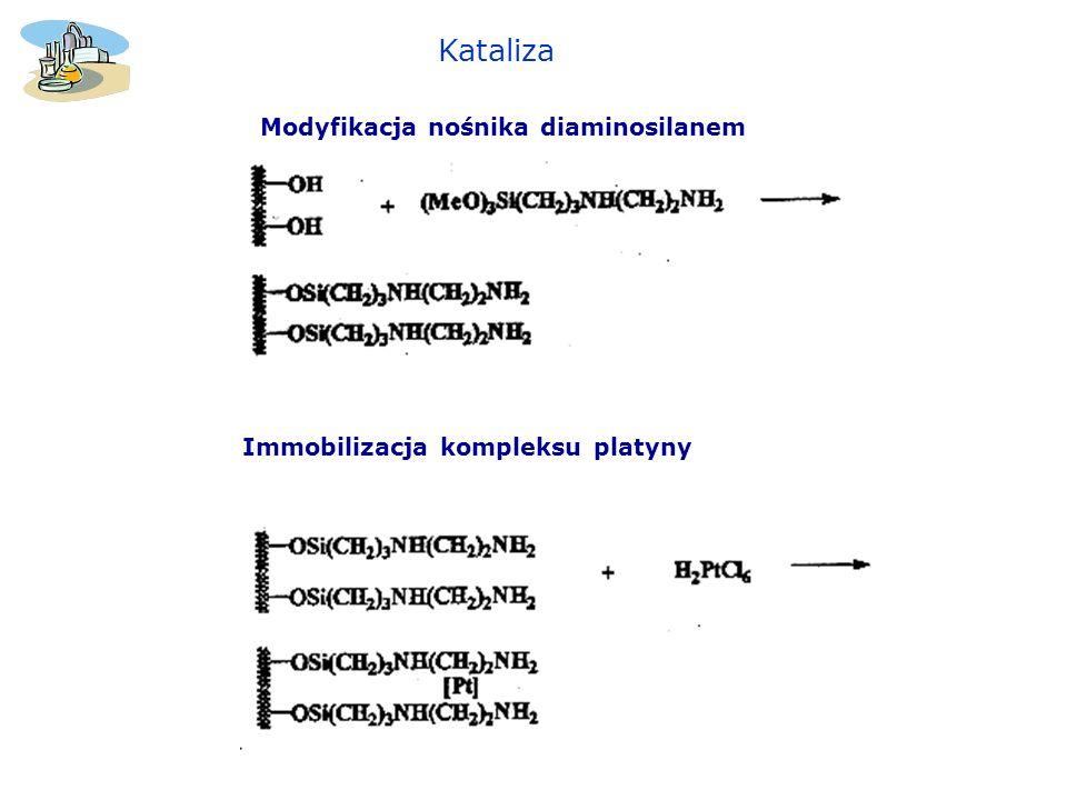 Kataliza Modyfikacja nośnika diaminosilanem