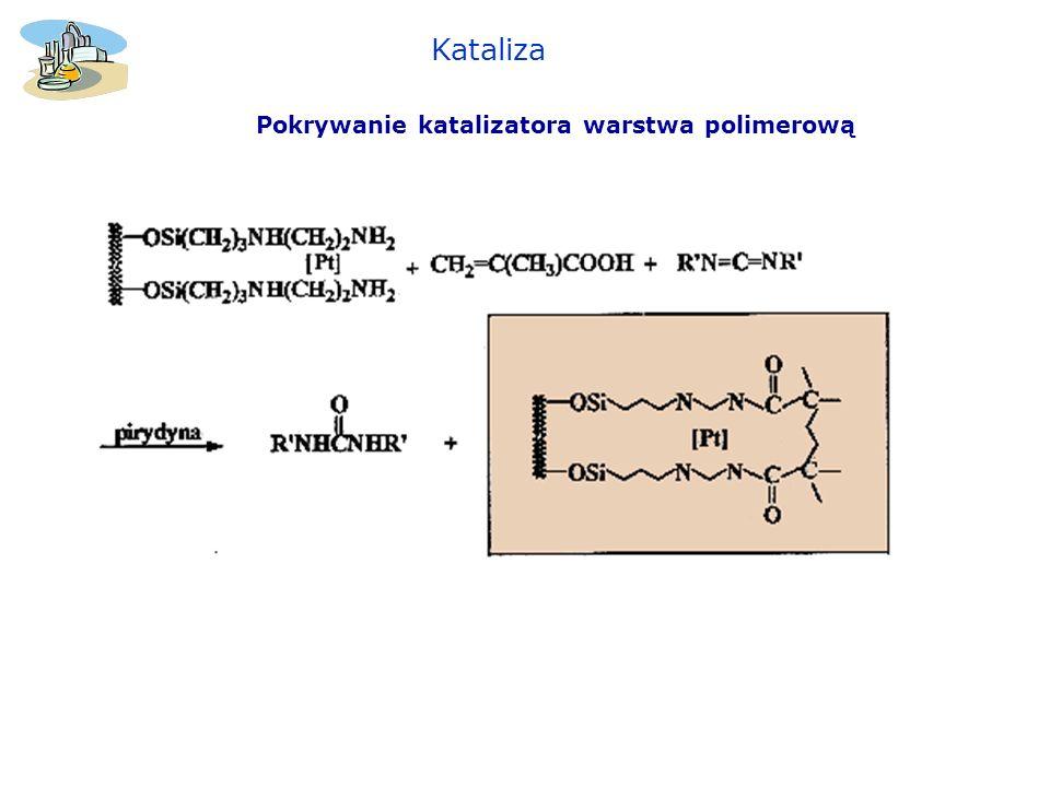 Kataliza Pokrywanie katalizatora warstwa polimerową