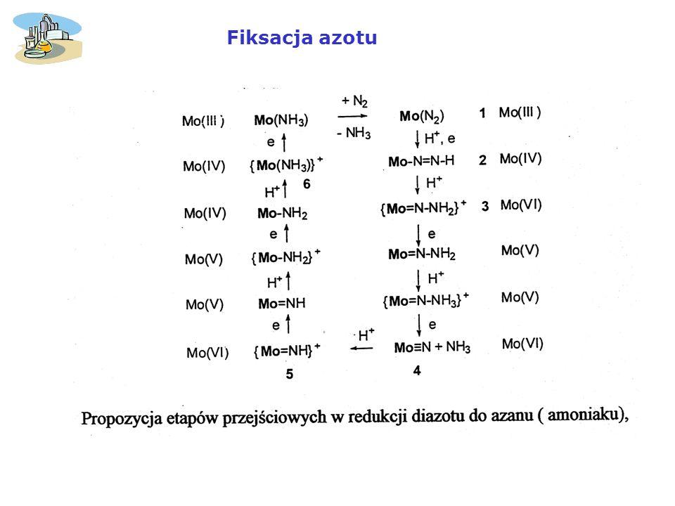 Fiksacja azotu