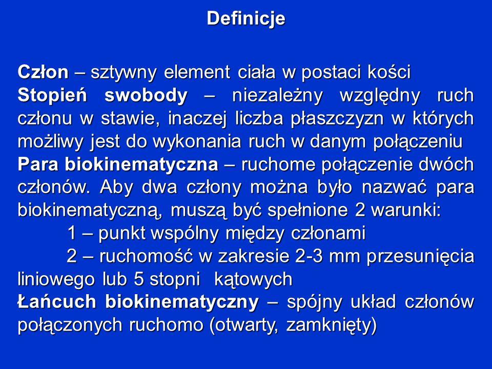 Definicje Człon – sztywny element ciała w postaci kości.