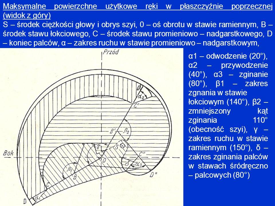 Maksymalne powierzchne użytkowe ręki w płaszczyźnie poprzecznej (widok z góry)
