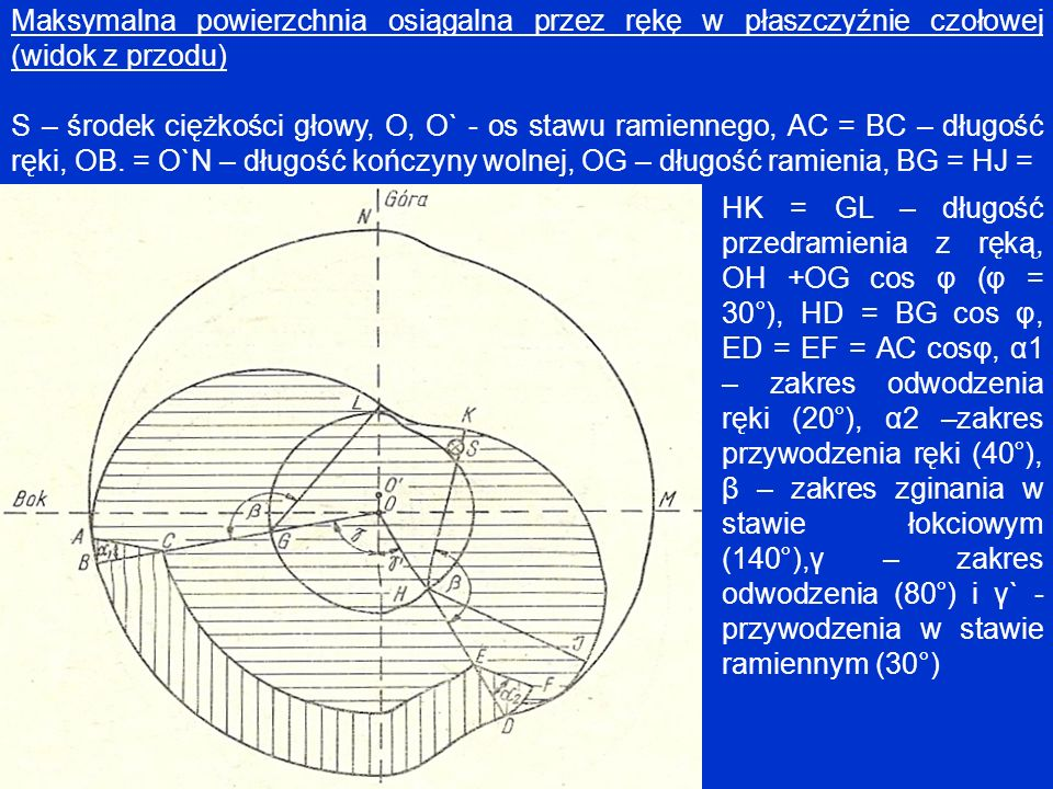 Maksymalna powierzchnia osiągalna przez rękę w płaszczyźnie czołowej (widok z przodu)