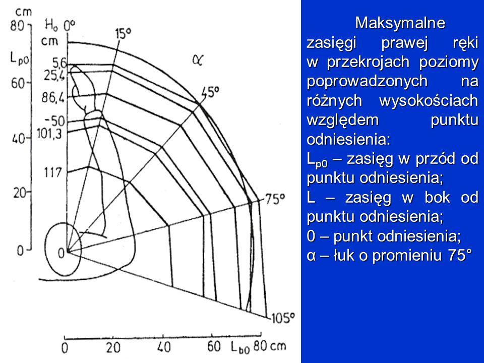 Maksymalne zasięgi prawej ręki w przekrojach poziomy poprowadzonych na różnych wysokościach względem punktu odniesienia:
