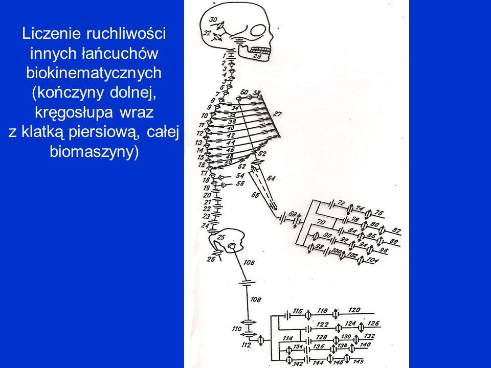 Liczenie ruchliwości innych łańcuchów biokinematycznych (kończyny dolnej, kręgosłupa wraz z klatką piersiową, całej biomaszyny)