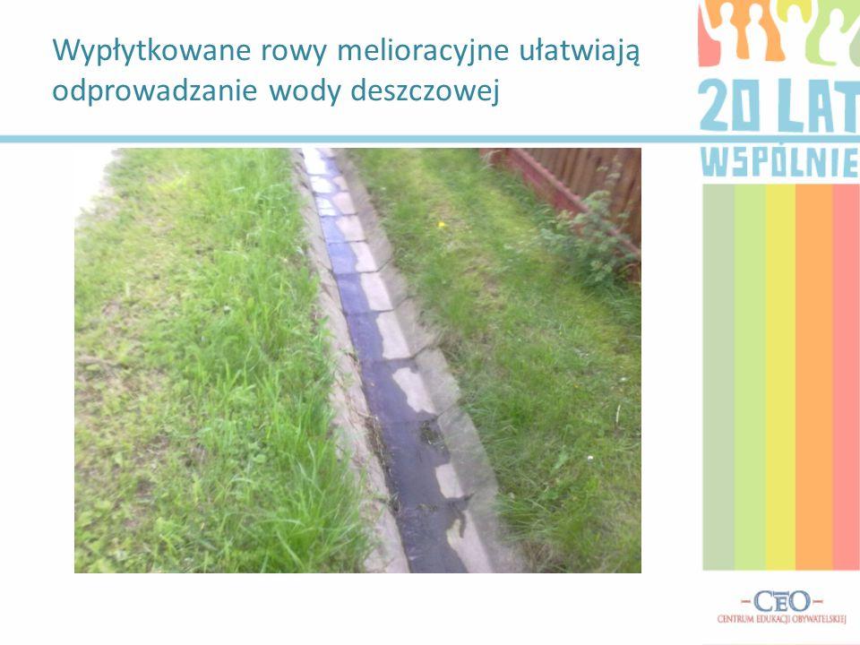Wypłytkowane rowy melioracyjne ułatwiają odprowadzanie wody deszczowej