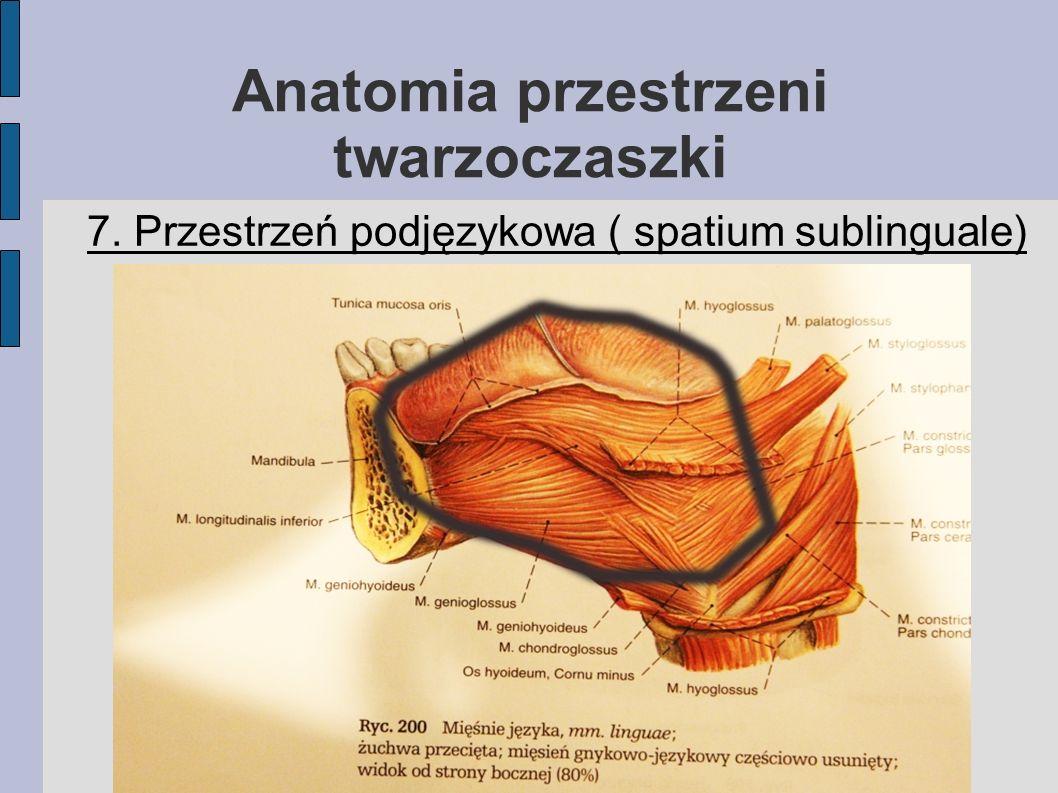 Anatomia przestrzeni twarzoczaszki