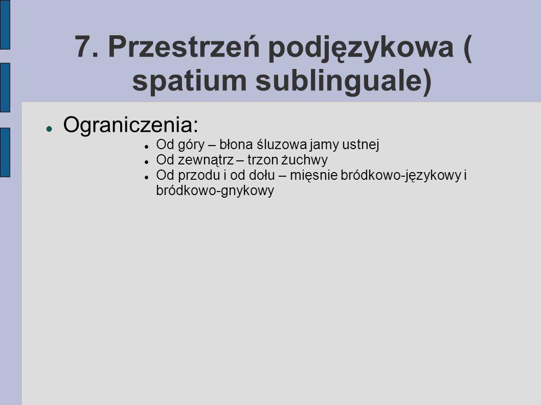 7. Przestrzeń podjęzykowa ( spatium sublinguale)