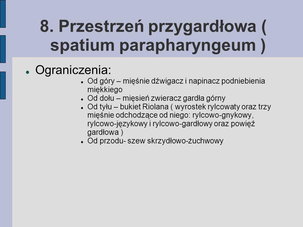 8. Przestrzeń przygardłowa ( spatium parapharyngeum )