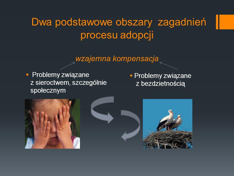 Dwa podstawowe obszary zagadnień procesu adopcji wzajemna kompensacja