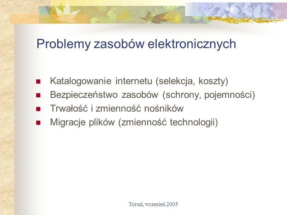 Problemy zasobów elektronicznych