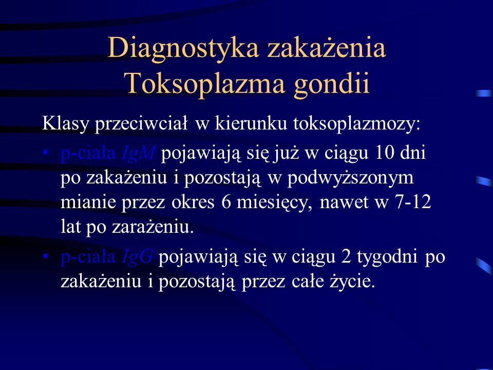 Diagnostyka zakażenia Toksoplazma gondii