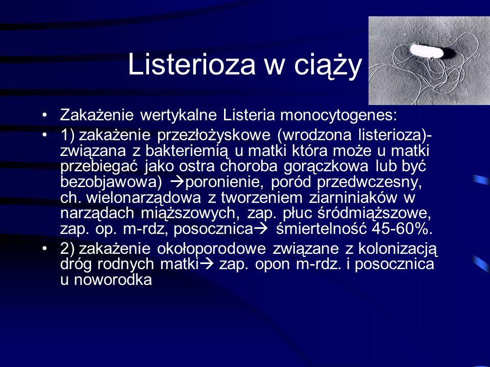 Listerioza w ciąży Zakażenie wertykalne Listeria monocytogenes: