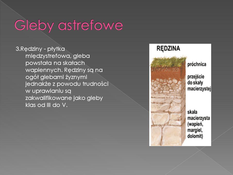 Gleby astrefowe