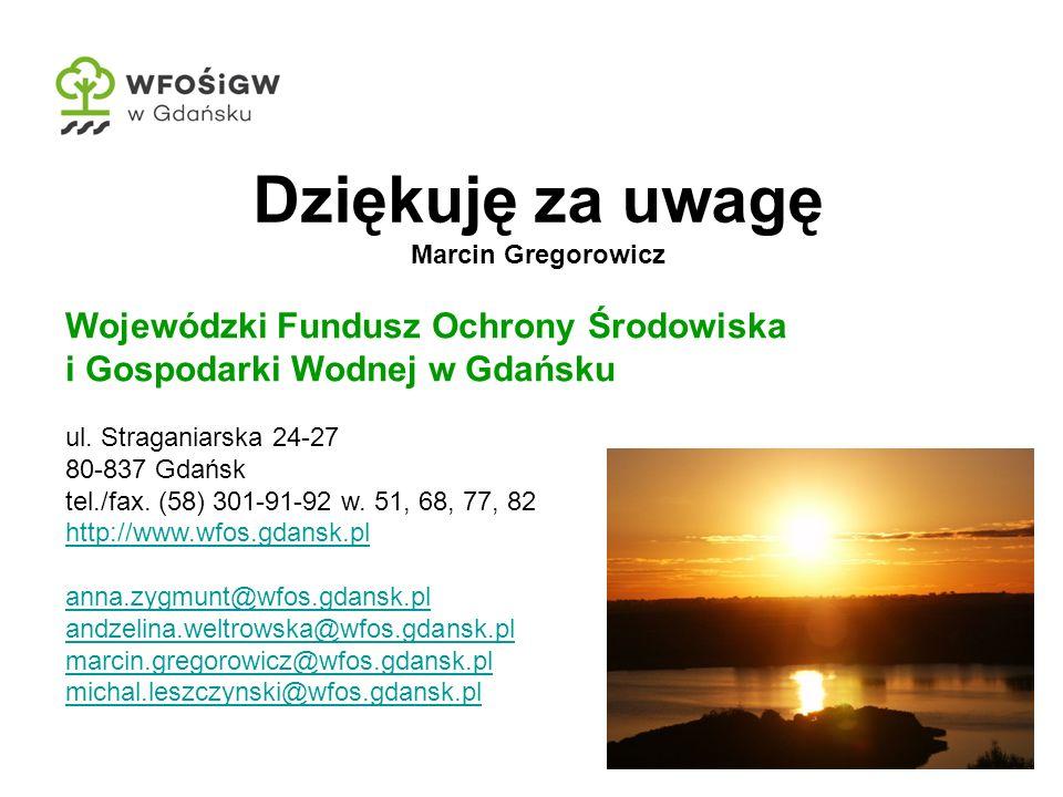 Dziękuję za uwagę Marcin Gregorowicz