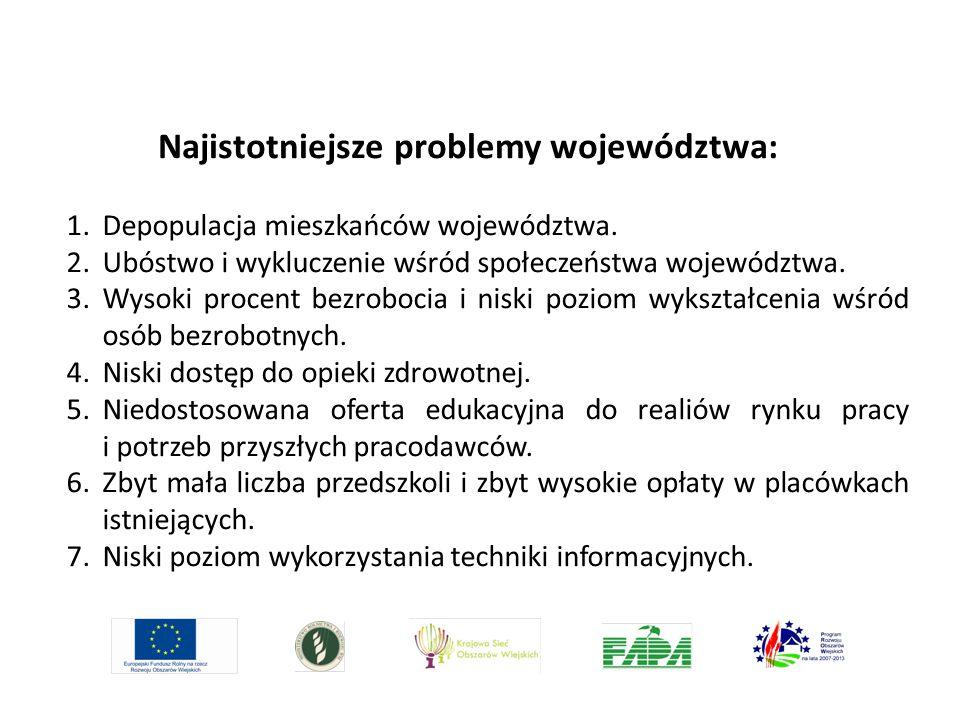 Najistotniejsze problemy województwa:
