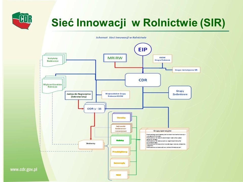 Sieć Innowacji w Rolnictwie (SIR)
