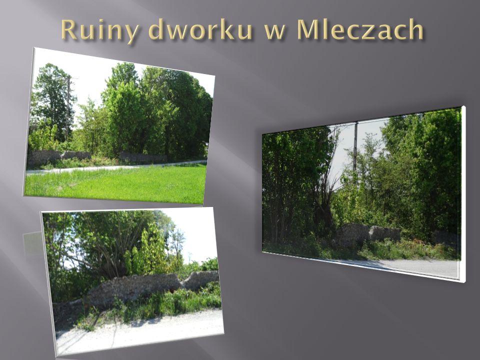 Ruiny dworku w Mleczach