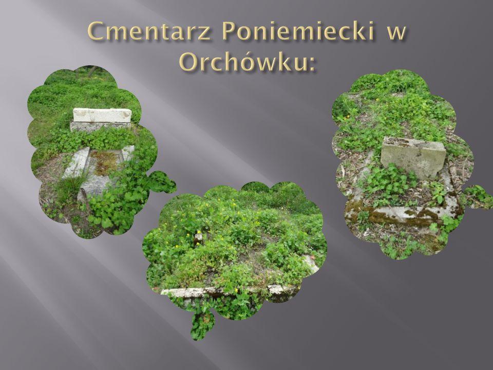Cmentarz Poniemiecki w Orchówku: