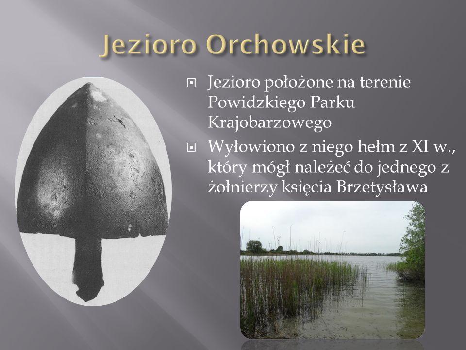 Jezioro Orchowskie Jezioro położone na terenie Powidzkiego Parku Krajobarzowego.