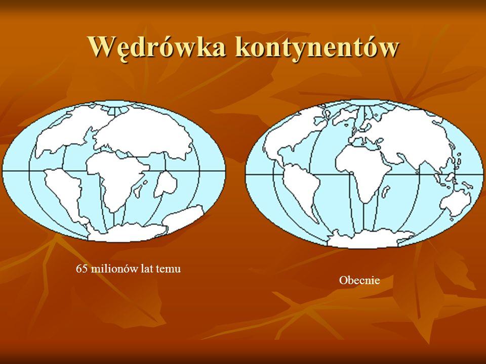 Wędrówka kontynentów 65 milionów lat temu Obecnie