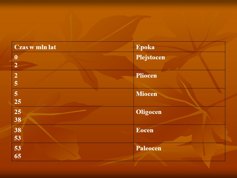Czas w mln lat Epoka 2 Plejstocen 5 Pliocen 25 Miocen 38 Oligocen 53 Eocen 65 Paleocen