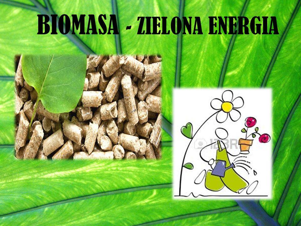 BIOMASA - ZIELONA ENERGIA