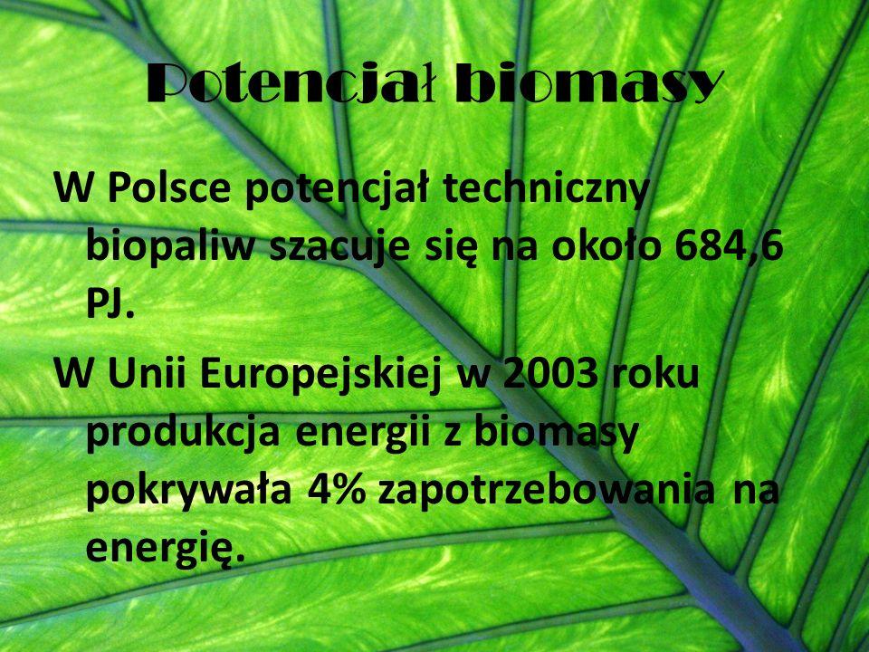 Potencjał biomasy