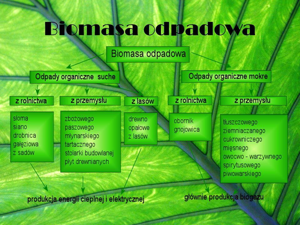 Biomasa odpadowa