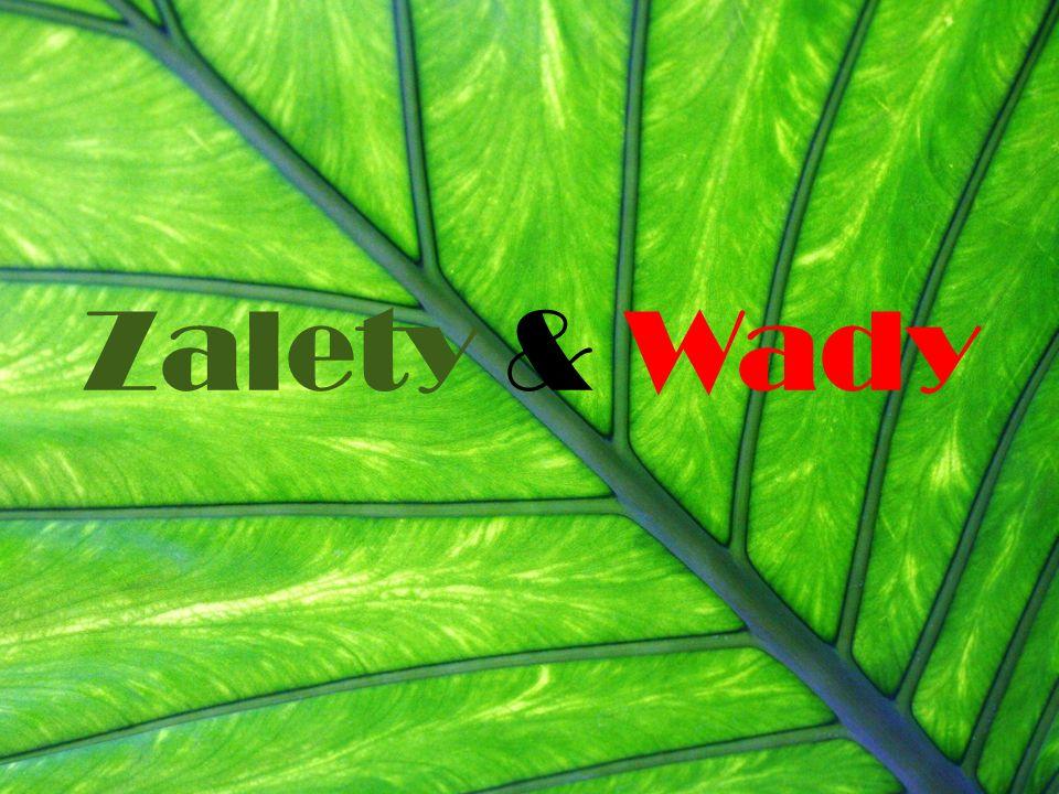 Zalety & Wady