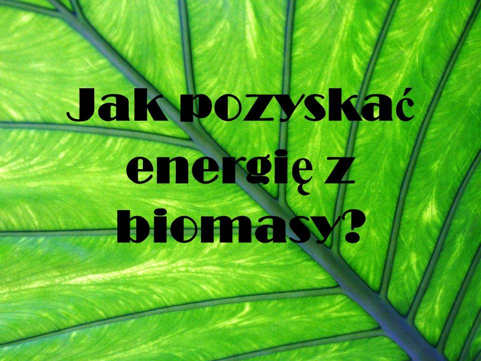 Jak pozyskać energię z biomasy
