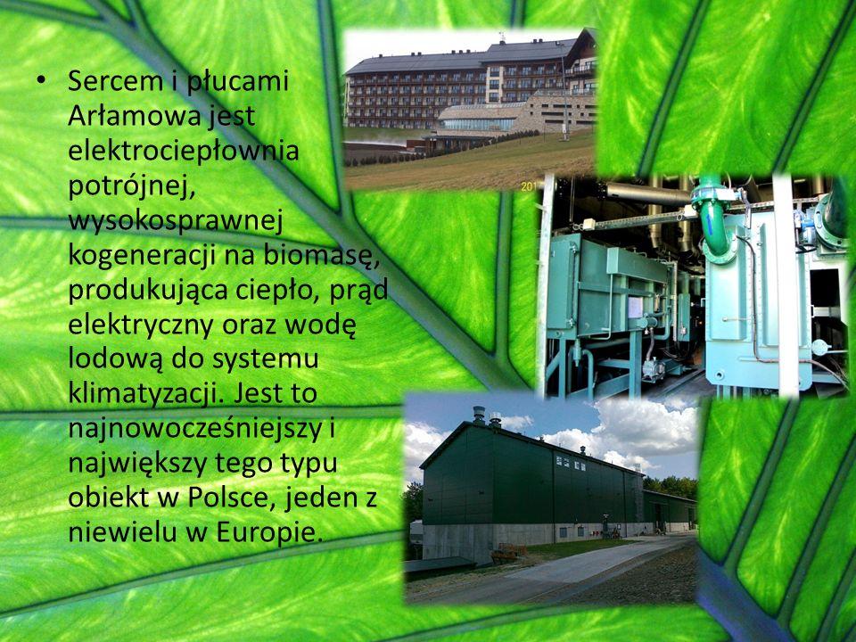 Sercem i płucami Arłamowa jest elektrociepłownia potrójnej, wysokosprawnej kogeneracji na biomasę, produkująca ciepło, prąd elektryczny oraz wodę lodową do systemu klimatyzacji.