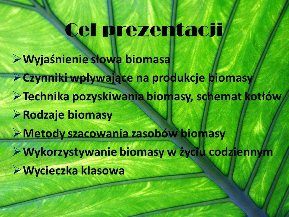 Cel prezentacji Wyjaśnienie słowa biomasa