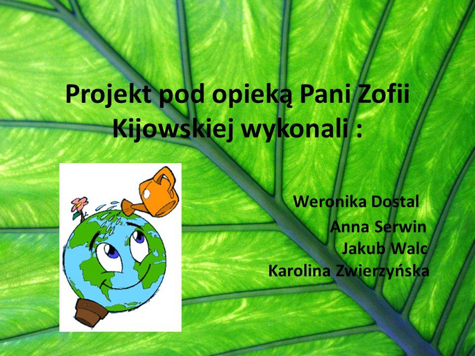 Projekt pod opieką Pani Zofii Kijowskiej wykonali : Weronika Dostal Anna Serwin Jakub Walc Karolina Zwierzyńska