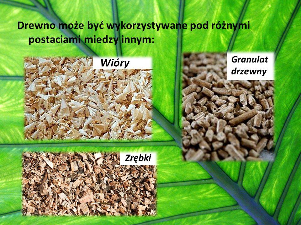 Drewno może być wykorzystywane pod różnymi postaciami miedzy innym:
