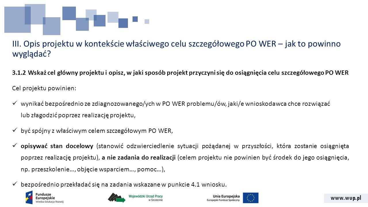 III. Opis projektu w kontekście właściwego celu szczegółowego PO WER – jak to powinno wyglądać