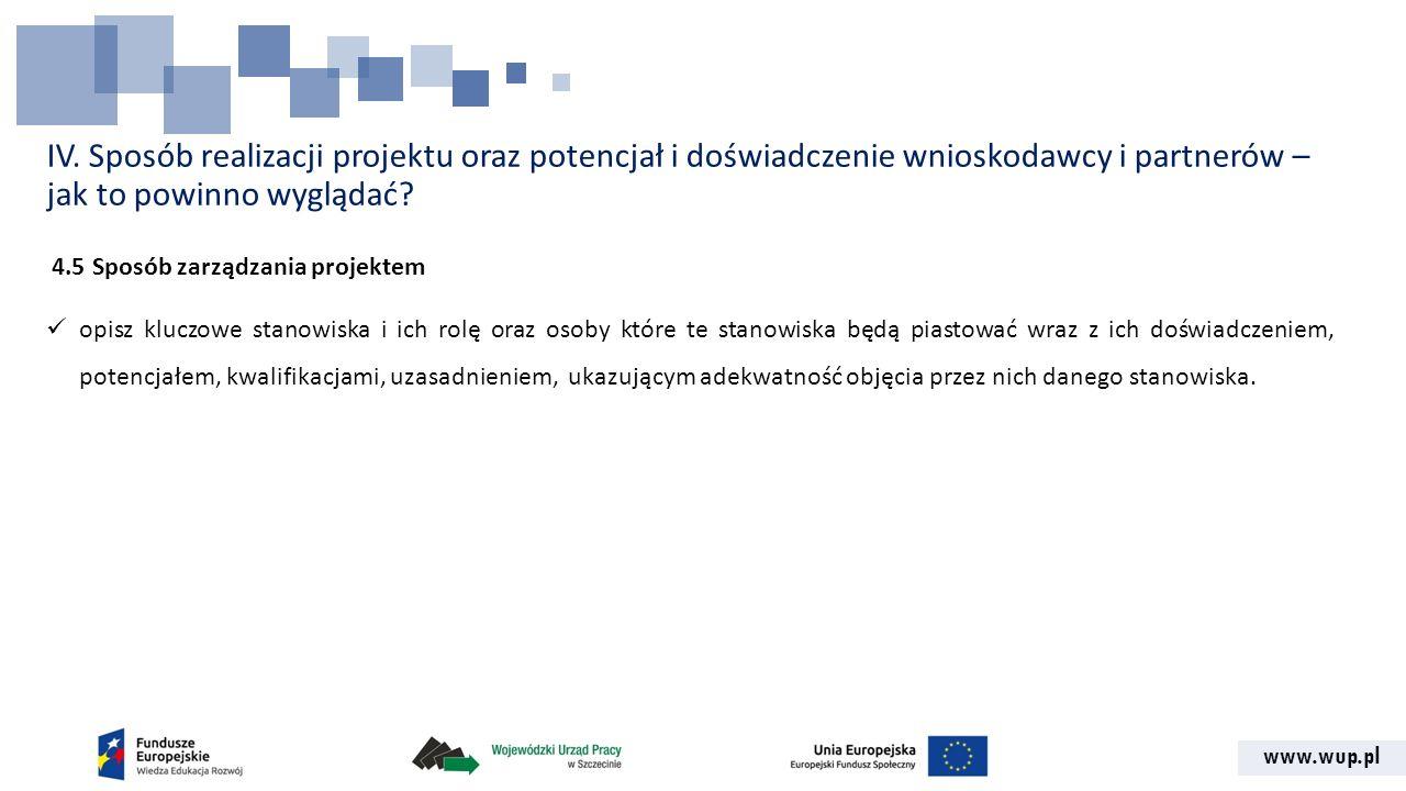 IV. Sposób realizacji projektu oraz potencjał i doświadczenie wnioskodawcy i partnerów – jak to powinno wyglądać