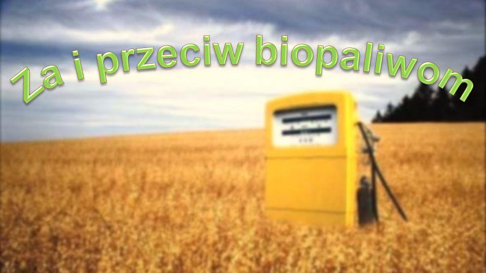 Za i przeciw biopaliwom