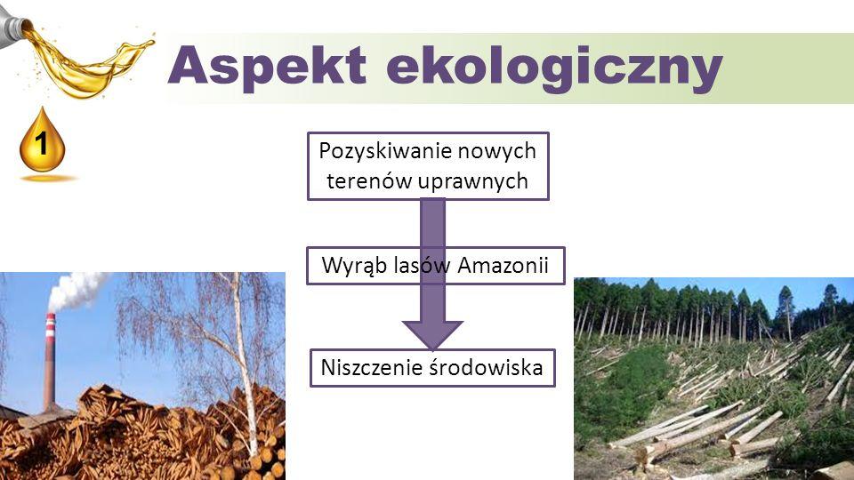 Aspekt ekologiczny 1 Pozyskiwanie nowych terenów uprawnych