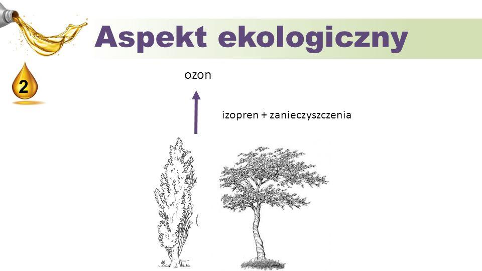 Aspekt ekologiczny ozon 2 izopren + zanieczyszczenia